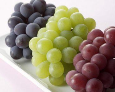 50 цікавих фактів про смачну і корисну ягоду – виноград