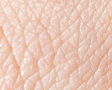 Цікаві факти про шкіру людини