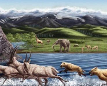 Цікаві факти про вимерлих тварин