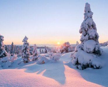 Цікаві факти про зиму