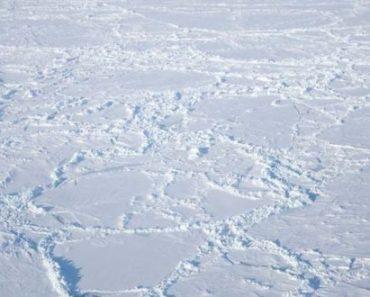 Цікаві факти про Північний полюс