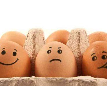 40 цікавих фактів про яйця
